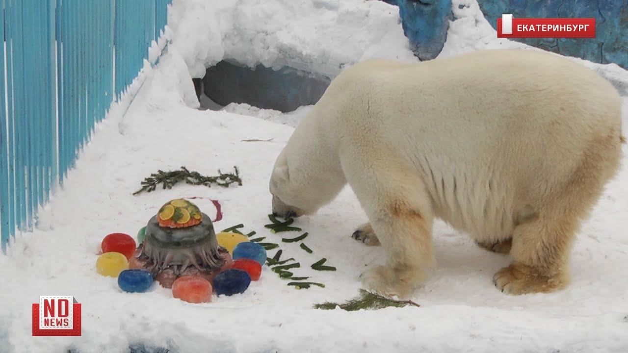 Торт для белого медведя на день рождения