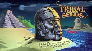 Tribal Seeds - Rock The Night (Feat. Maad T-Ray)
