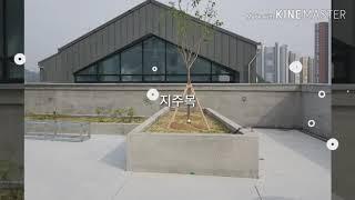 #옥상조경 #실내조경#인테리어조경#은행고등하교 앞#시흥…