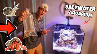 BUYING *NEW* CRABS & SNAILS for My AQUARIUM!!