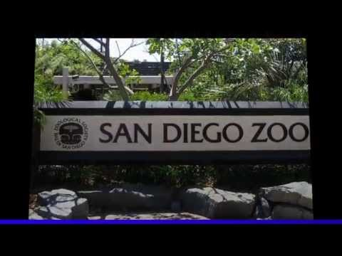 Top 10 Tourist Attractions in California | Travel Visit San Diego Zoo Part 1