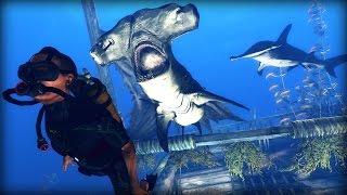 Depth 'Ship Wrecked' Trailer