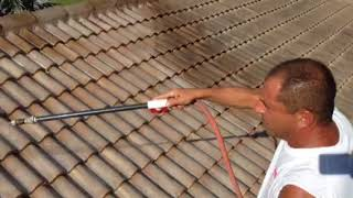 Soft wash chemical roof cleaning three-year warrantee
