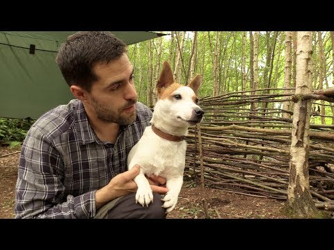 Bushcraft Camp with my Dog - Wall Weaving, Campfire and Cooking Bacon on the Grill