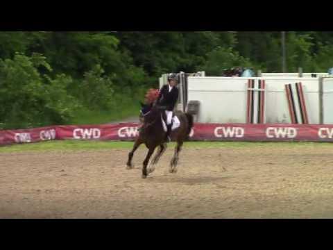 Video of EKARLA ridden by Kristyna Carlton from ShowNet!