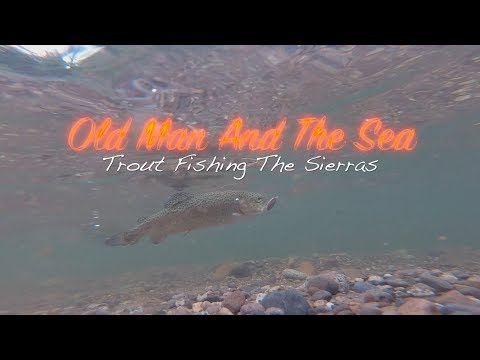 Trout Fishing The California Sierras | Desolation Wilderness