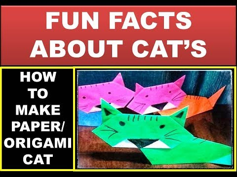 Fun facts about CAT/How to make a paper cat/Origami cat