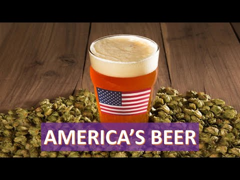 The Rise of the American IPA — Craft Beer Economics