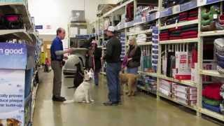 Pet Smart Dog Training With Roger Jackson