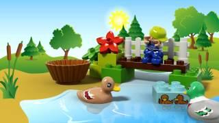 LEGO DUPLO - 10581 Ліс: качки(Прогуляйтеся лісом LEGO® DUPLO® , щоб подивитися на сім'ю качок - маму качку, тата качура та каченят. Ваш малень..., 2015-07-03T11:07:24.000Z)