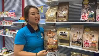 Tình huống bán bát và thức ăn cнo chó Poodle | Pet Mart