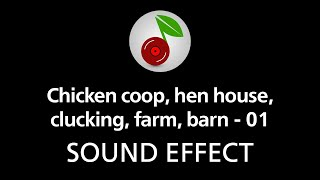 Chicken coop, hen house, clucking, farm, barn - 01, sound effect