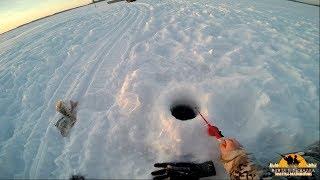 видео Отчеты о рыбалке ЮГРА