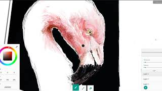 Roblox Flamingo Speedpaint