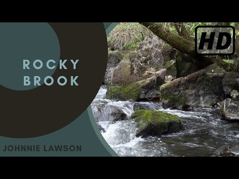 Nature Sounds-Waterfall Sound-Natures Relaxing Music-Birds Singing Noises-Forest Birdsong Relaxation