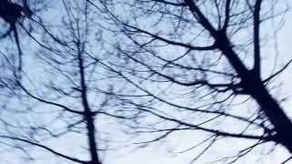 E.Satie, Les trois valses distinguées du précieux dégouté (2. Son binocle)