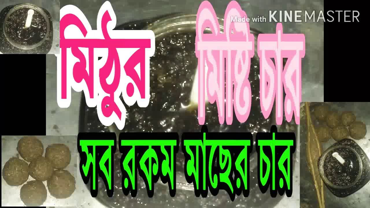 Download মিঠুর মিষ্টি চার সব রকম মাছের চার # Mithu Miss Teacher