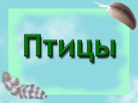 Раскраски азбуки в картинках Русский алфавит Дитяч