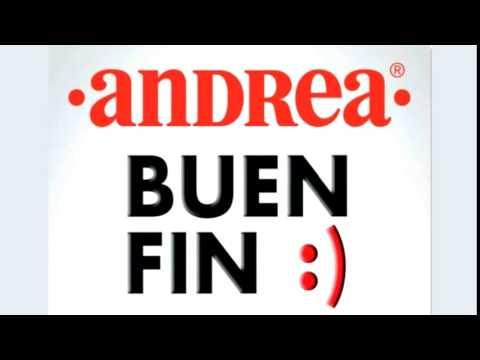 Calzado Andrea Buen Fin