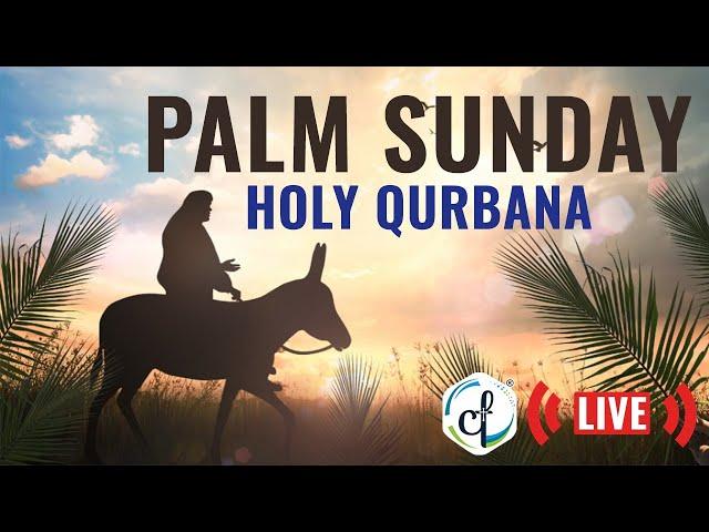 Live || Palm Sunday Holy Qurbana || Catholic Focus