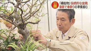 皇居も正月準備 新年用「春飾り」の仕上げ大詰め(19/12/25)