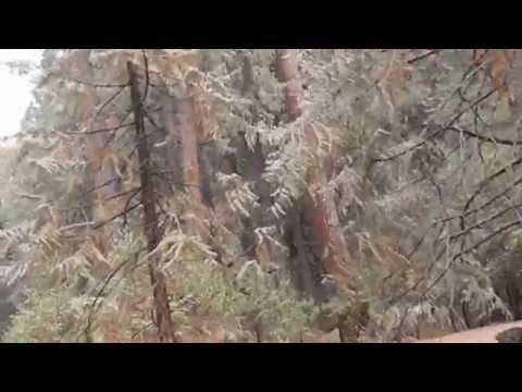 Peak Water News - Extreme Drought Sierra Nevada Mountains