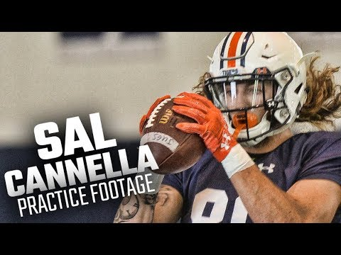 Auburn's Sal Cannella catches passes in fall camp