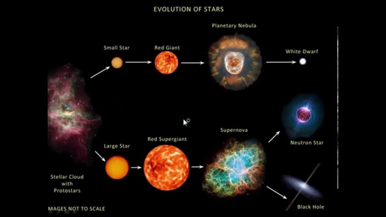 an introduction to the stellar evolution the birth of a star Stars - introduction search  generate sufficient heat to support the star agains its own gravity and the star will collapse stellar evolution .