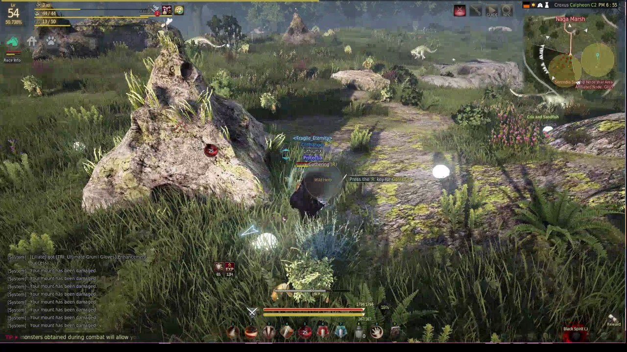 Testing New Flashy Warrior Skill On Black Desert Online Youtube
