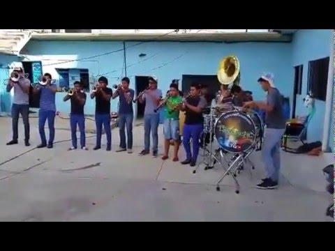 El son de la rabia Banda Lima Real de Chiautla de Tapia, Puebla, Mexico.