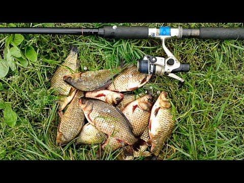 большую ловля рыбы на спининг в сочи курсы
