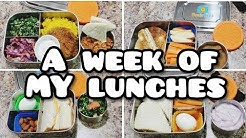 What I Ate For Lunch - 5 Adult Lunches - MY new bento Box - Bento Pros - Bella Boo's Lunches