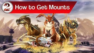 Guild Wars 2: How to Get Mounts | Where to Get the Jackal, Skimmer, Springer & Raptor Guide