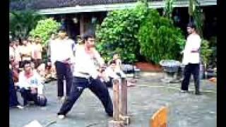 merpati putih kolat 244 dan 42 Jakarta Utara