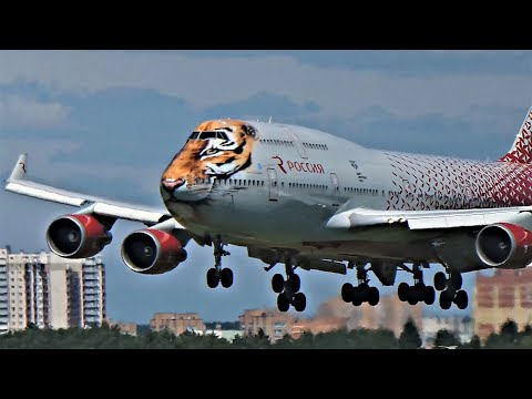 """Боинг 747-400 """"Тигролет"""" Авиакомпания Россия. Тигр Тигра"""