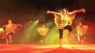 dun danse 2016 zébra