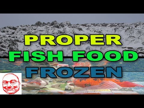 Proper Fish Food. Frozen.