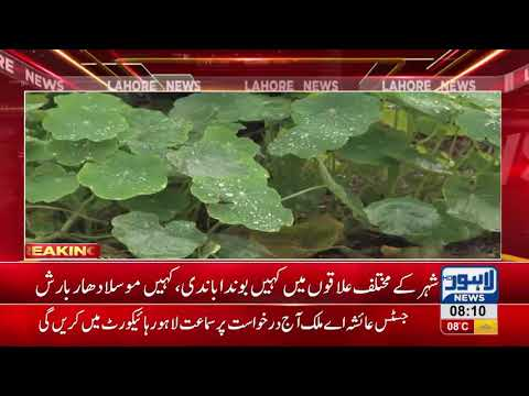 Pleasant weather cuts power demand   Lahore News HD