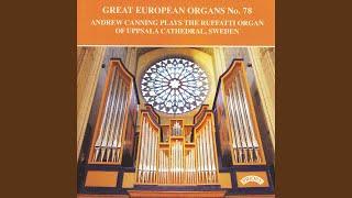 sweet-sixteenths---a-concert-rag-for-organ
