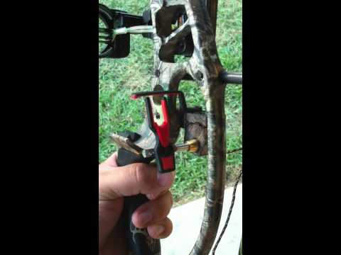 Hoyt Alphamax 32 Review