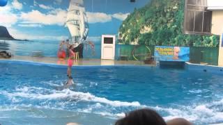 На сказочном шоу дельфинов!!!