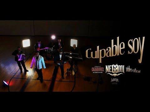 Negami's Music Video Premier
