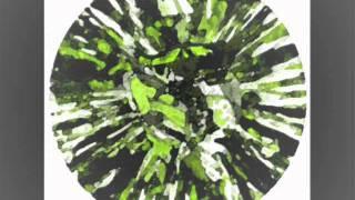 Expflex / experimental Techno by Christian Schildger aka Dermaptera / w+p 2011