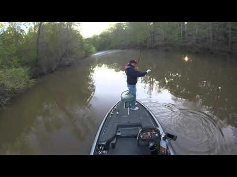 Bass Fishing The Ross Barnett Reservoir / Pearl River