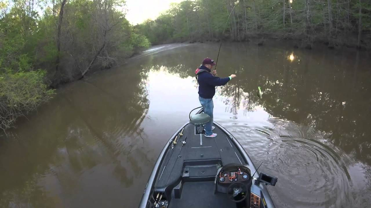 Bass fishing the ross barnett reservoir pearl river for Ross barnett reservoir fishing report