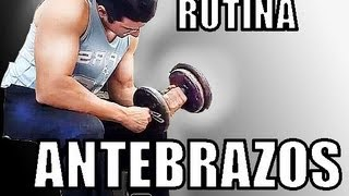 antebrazos con mancuernas forearms how to train dips triceps chest