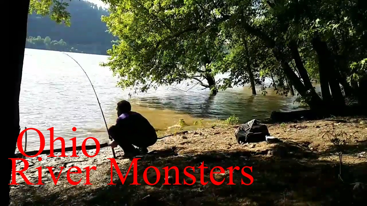 Ohio river fishing 2017 2018 how to catch drum fish sheep for Ohio river fishing report