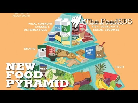 The Evolution from the Food Pyramid