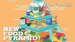 The food pyramid changes