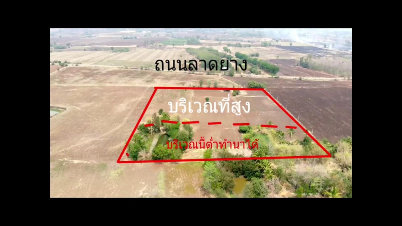 ขายที่ดินเหมาะทำ โคก หนองนา โมเดล 16ไร่ๆละ150,000บาทเป็นโฉนด 087-9743824บี้